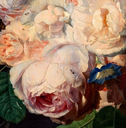 Jan van Huysum.Still Life with Flowers and Fruit(detail with rose). c.1700-49.