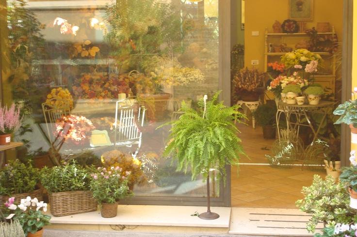 Flower Shop in Ravenna, Italy