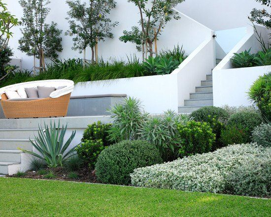 un mur en béton blanc autour des escaliers dans le jardin