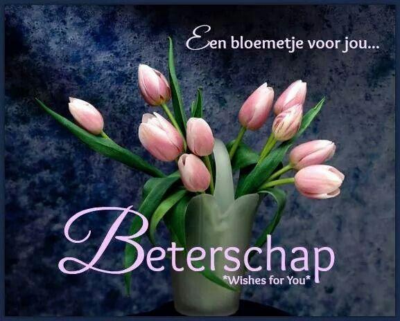 Citaten Voor Beterschap : Een bloemetje voor jou beterschap