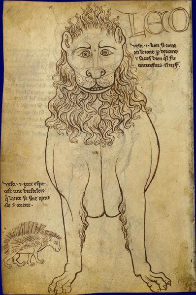 Faune : lion    Villard de Honnecourt, Carnet de dessins  France, vers 1230  Paris, BNF, département des Manuscrits, Français 19093, fol. 24v.