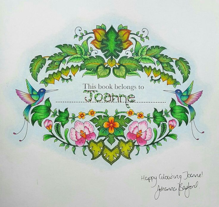 Illustration By Johanna Basford Book Magical Jungle Colourist Merib Additions To Origional
