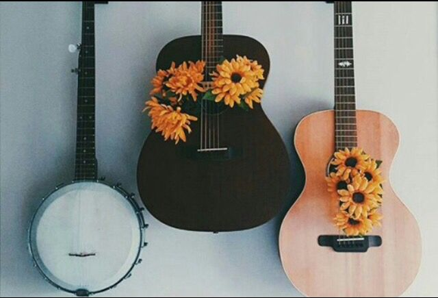 Learn how to play the guitara ❤️