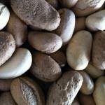 Bij #Zomertijd geniet je van overheerlijke verse broodjes! #lunch #strand  http://www.zomertijdstrand.nl