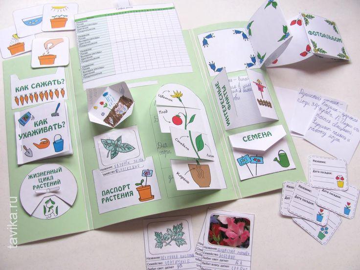 как сделать лэпбук о растениях
