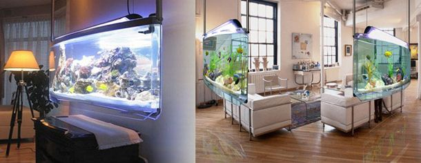 The Spacearium is a hanging aquarium that comes in 55 gallon up to 75 gallon sizes.