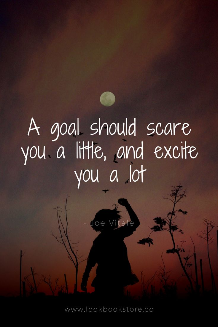 """Inspirational Quotes // """"A goal should scare you a little, and excite you a lot."""" - Joe Vitale"""