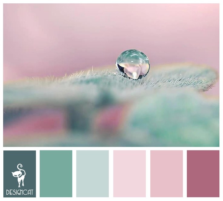 1000 images about kolory kolory kolory on pinterest for Pastel teal paint