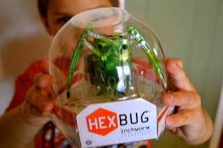 HEXBUG Inchworm via Mama Luvs Books