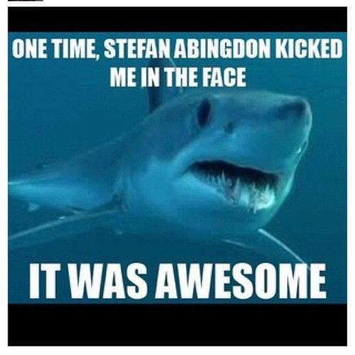 I KICKED A SHARK IN THE FACE