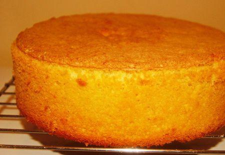 фото к рецепту Бисквит с крахмалом