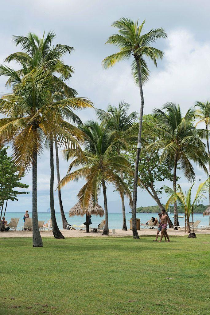 Club Med les Boucaniers, Pointe Marin, Sainte Anne, Martinique | par Photos de martinique