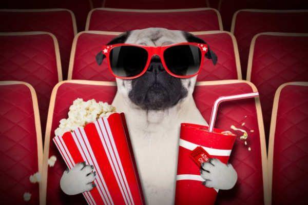 Esto, por suerte, nos llevará muchas palomitas.Es momento de disfrutar los mejore tráilers estrenados durante la semana. Grandes títulos nos esperan en las salas de cine y en la comodidad de nuestro hogar.ManhuntJohn Woo regresa al género que lo hizo famoso, el de acción. Ahora con los actores Tao Okamoto, Ji-won Ha, Jun Kunimura. El estreno de esta cinta tuvo lugar en el Toronto International Film Festival y aún no...