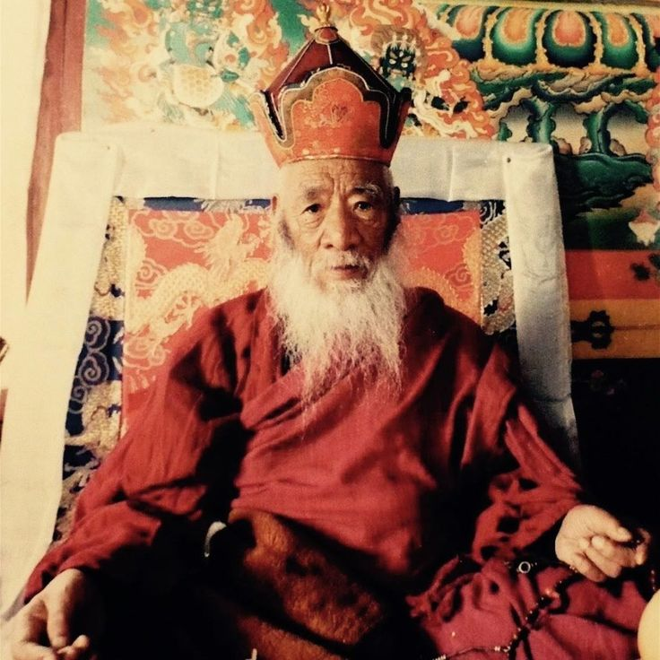 "Use it well ~ Chatral Rinpoche http://justdharma.com/s/jxdon    Conceiving of your body as a servant or a thing to ferry you about,  Don't allow it to rest in idleness for even just a single moment;  Use it well, spurring on your entire body, speech and mind to virtue.    – Chatral Rinpoche  from the book ""Compassionate Action"" ISBN: 978-1559392716  -  http://amzn.to/12WUTjt  translated by Adam Pearcey  source: http://www.lotsawahouse.org/tibetan-masters/chatral-rinpoche/words-advice"