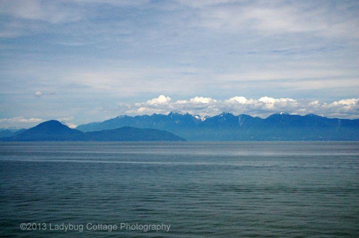 West Coast - LADYBUG COTTAGE PHOTOGRAPHY #11