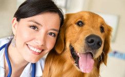 Clnic For Pet - AES http://www.dailymotion.com/video/x4wv9la The Animal Emergency Service is provide 24 hourse better service for you pet. we think that you pet is our pet so we provide   Emergency Vet Hospital and Pet Doctor. if you feel that you pet health is good do vist our Emergency Vet Hospital and care   your lovely Pet.