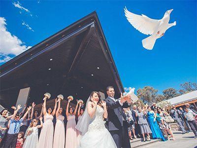 Wedding Photographer and videographer Sydney Australia