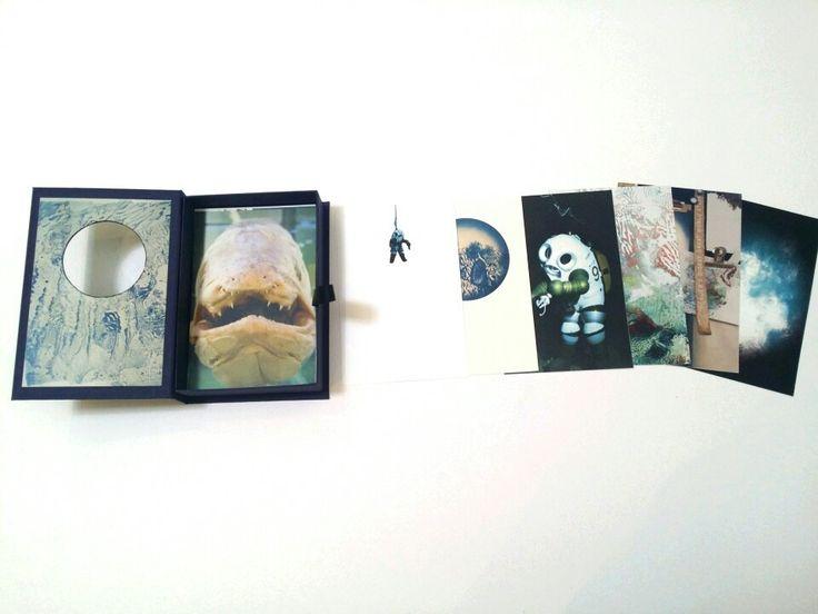 'Ichthyotale' exhibition catalogue - graduate exhibition,2014               (chloe obermeyer)