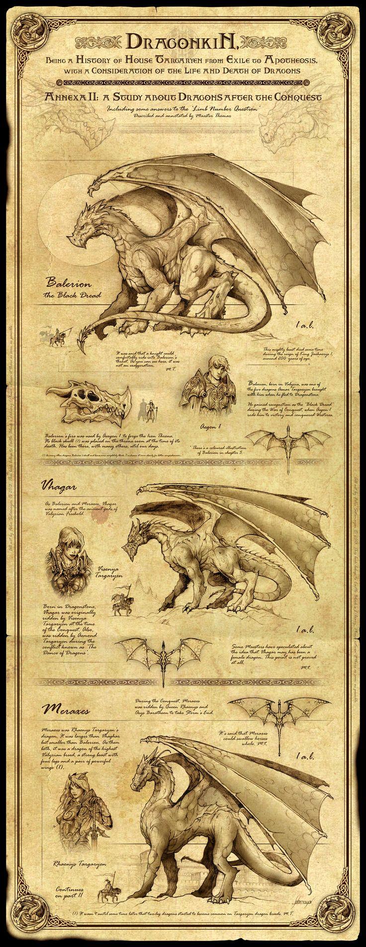 Dragonkin I by *Feliche on deviantART | a sweet encyclopedia-like description of the legendary dragons of Aegon.