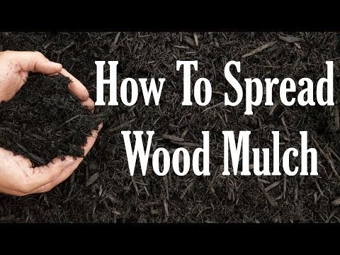 ▶ How To Spread Wood Mulch: Gardening Know How's Two Minute Gardening Tidbit: Episode 4 - YouTube