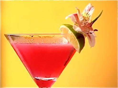 Blue Berry Daiquiri : Kneus de blauwe bessen met de suiker in het mixglas tot het sap goed zichtbaar is. Giet het limoensap, het suikerwater en de rum erbij. Vul het mixglas op met ijsblokjes, sluit de shaker en shake krachtig. Dubbel strain de cocktail langs het fijne zeefje in het cocktailglas. werk af: Werk de cocktail af met een partje limoen en een mooie bloem.