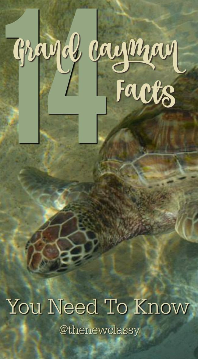 14 Grand Cayman Facts You Need To Know