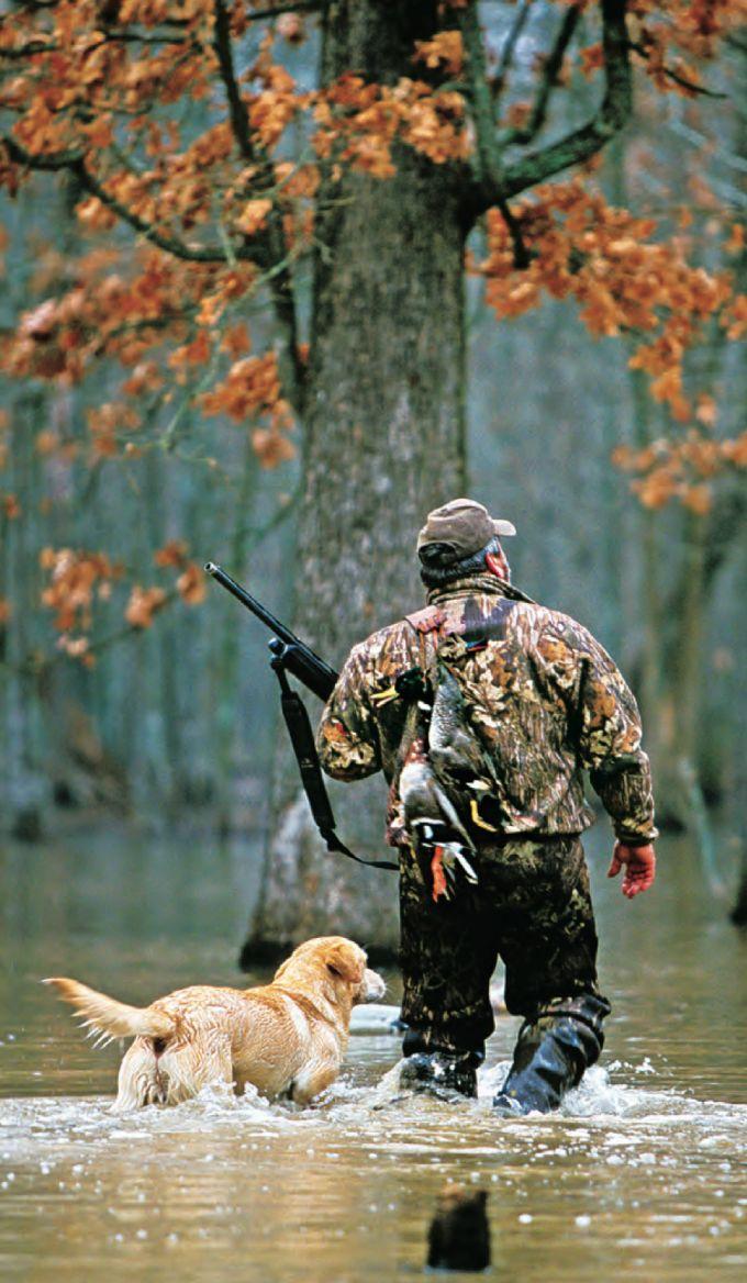 фото картинок про охоту практика показывает, что