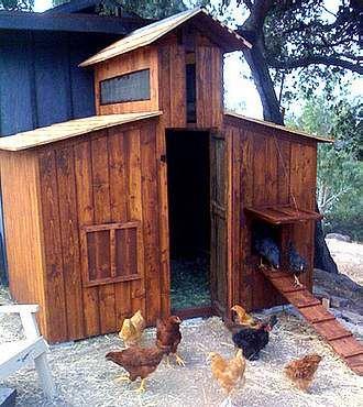 Prachtig kippenhok, gemaakt met het hout van pallets.