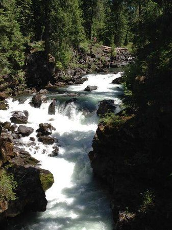 Natural Bridge Loop: See the Rogue River disappear into a volcanic tunnel ... - See 93 traveler reviews, 59 candid photos, and great deals for Medford, OR, at TripAdvisor.