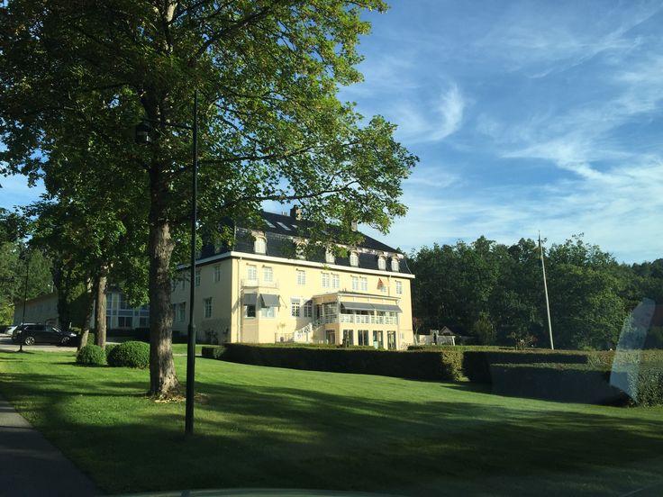 Villa Fridhem
