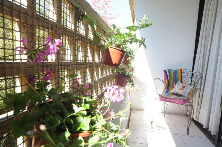 La vegetación amabiliza cualquier ambiente