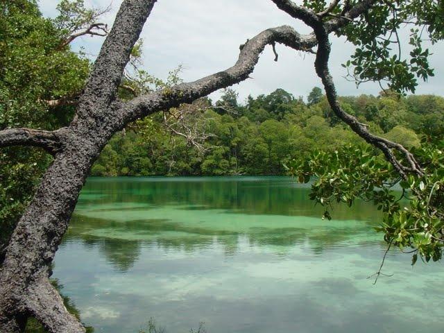 Kakaban Lake, Derawan Island