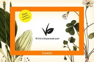 villiyrtti | Suomen Luonto