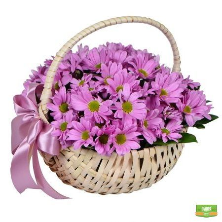 Нежное море лиловых лепестков, словно рассветные облака, окутывают легкостью и ощущением праздника. http://flora2000.ru/p/moya_miledi