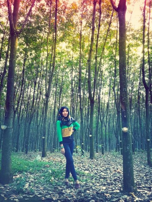 Hijab and forest