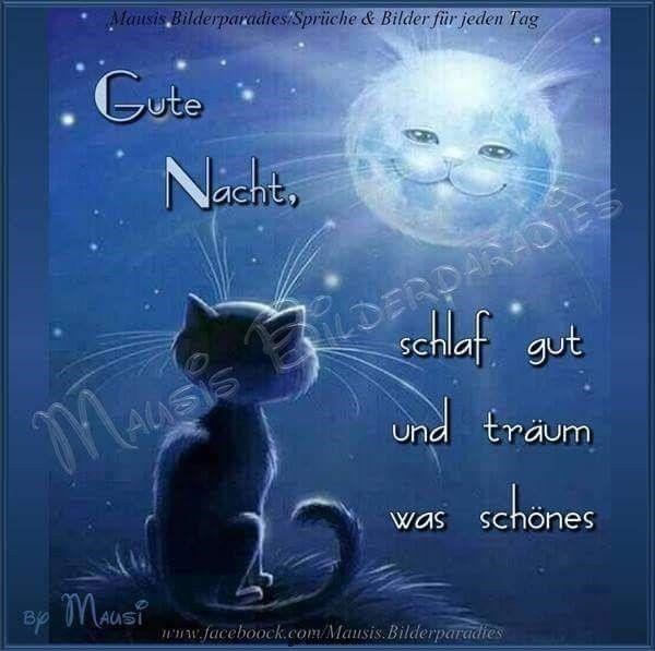 Kostenlose Gute Nacht Bilder Zum Runterladen Gb Bilder Gb Pics Gastebuchbilder Gute Nacht Gute Nacht Bilder Nacht