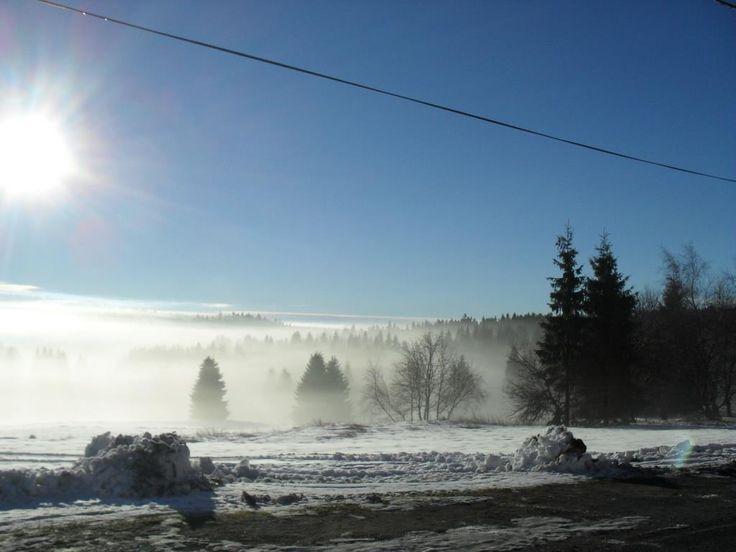 sluníčko v zimě