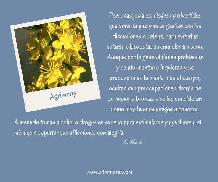 Agrimony - Flores de Bach