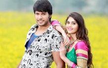 Andhra Wishesh Gallery: Beeruva Movie Stills