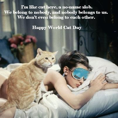 world cat day | Tumblr