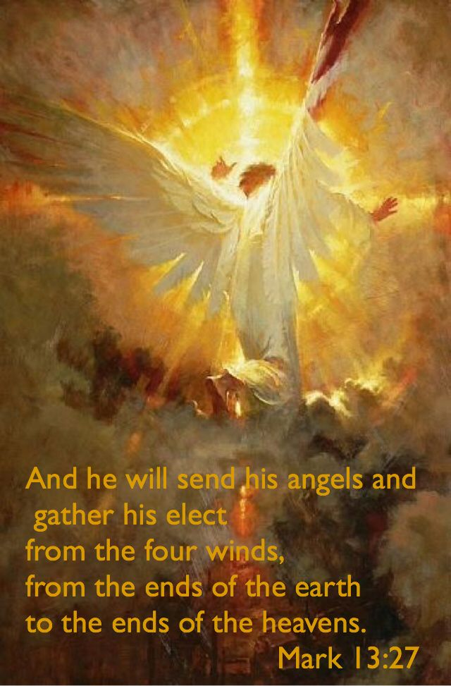 Mark 13:27 ~ He will send his angels. (With images ...