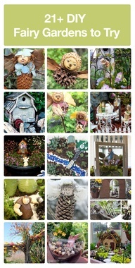 Start your own fairy garden! So want a fairy garden when we have our own home