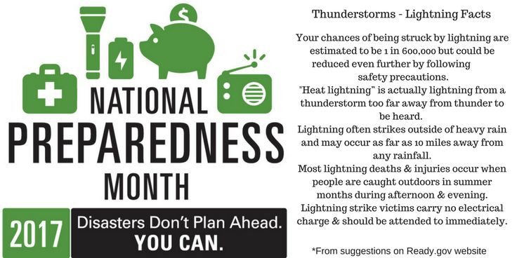 Thunderstorms : LIghtning Facts