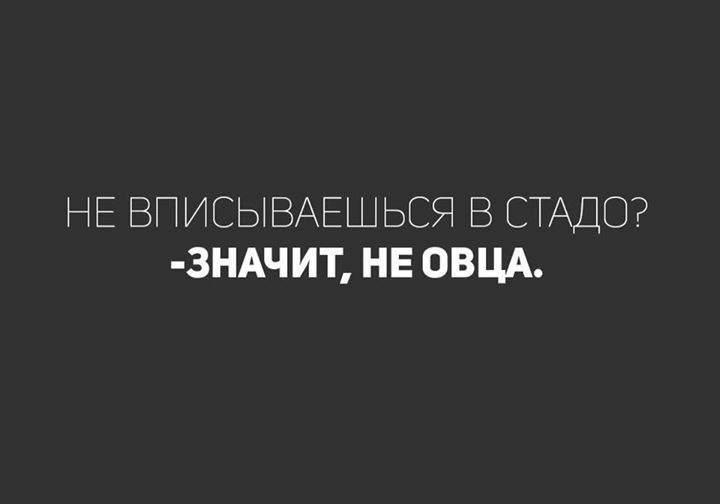 17498579_351599298574847_5821730464393783840_n.jpg (720×504)