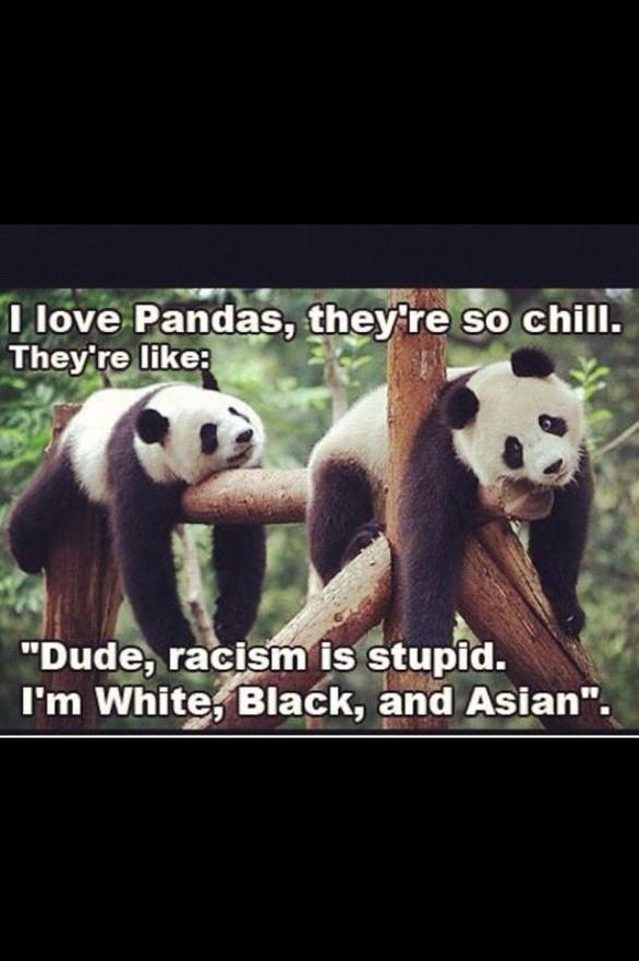I love pandas too.