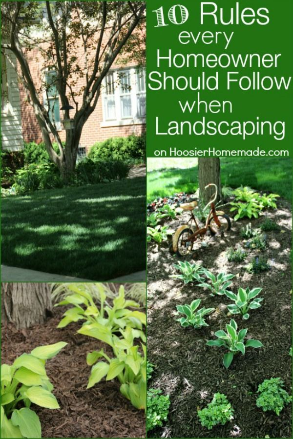 Everyone wants a yard that is beautiful and easy to take care of! These 10 Rules every homeowner should follow when landscaping will make it easy and fun for you! Click on the Photo to learn more!