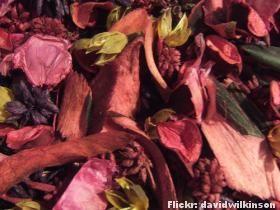 Secagem de flores - petalas