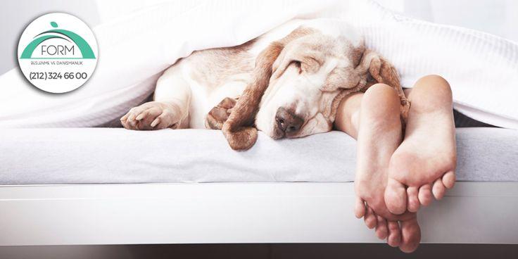 Mutluluk... Sıcacık bir yataktır! Keyifli Pazarlar...  #FormBeslenme #Pazar #MutluPazarlar
