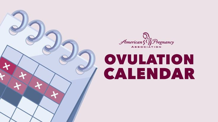 This free tool corresponds to an ovulation calendar and a calculator …   – Pregnancy & Family