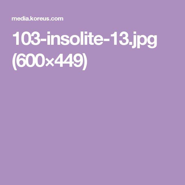103-insolite-13.jpg (600×449)